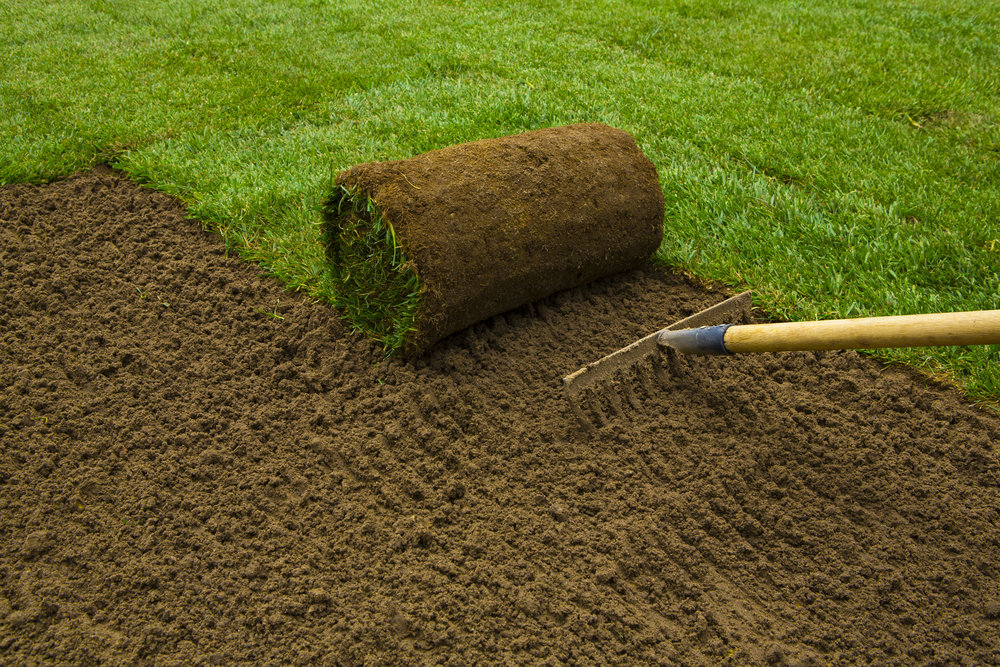 Lawn Care   *Mowing *Weed Control & Fertilization *Mosquito & Pest Control *New Lawn Installation