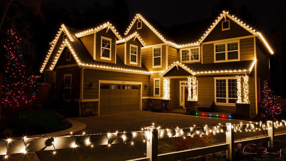 Holiday Lighting   *Super Bright LEDs