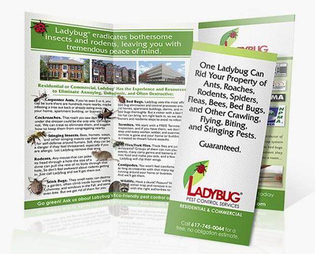 pest control company brochure