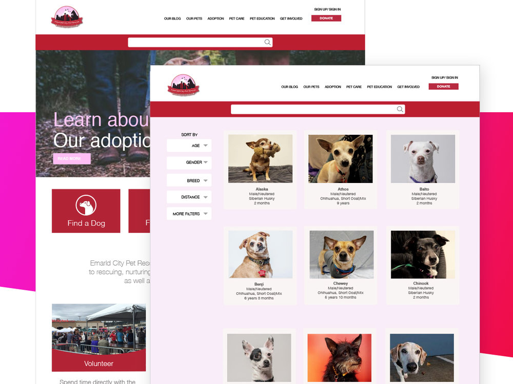 ecpr-websitev4 copy v2.jpg