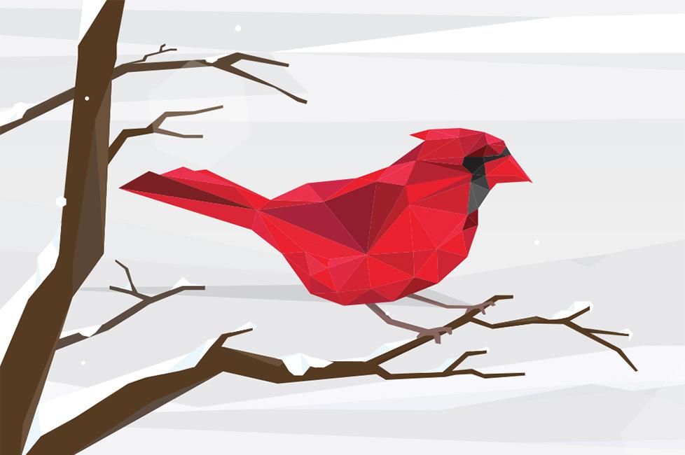 Creative_Lou_Bird.jpg
