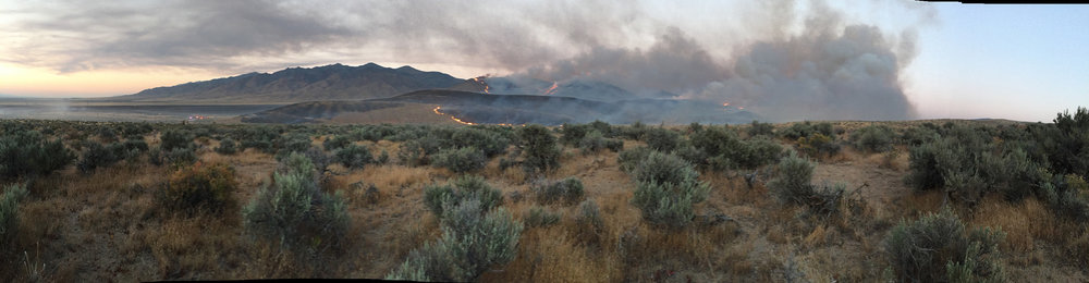 limerick-fire-that-started-july-3-2017-15-miles-northeast-of-lovelock-nevada_35653667471_o