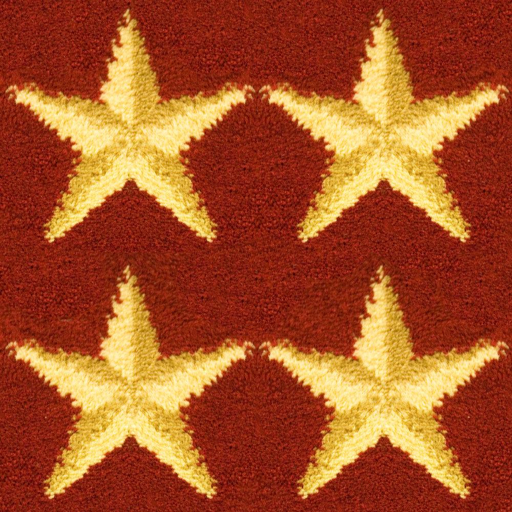 Hollywood Stars Carpet.jpg