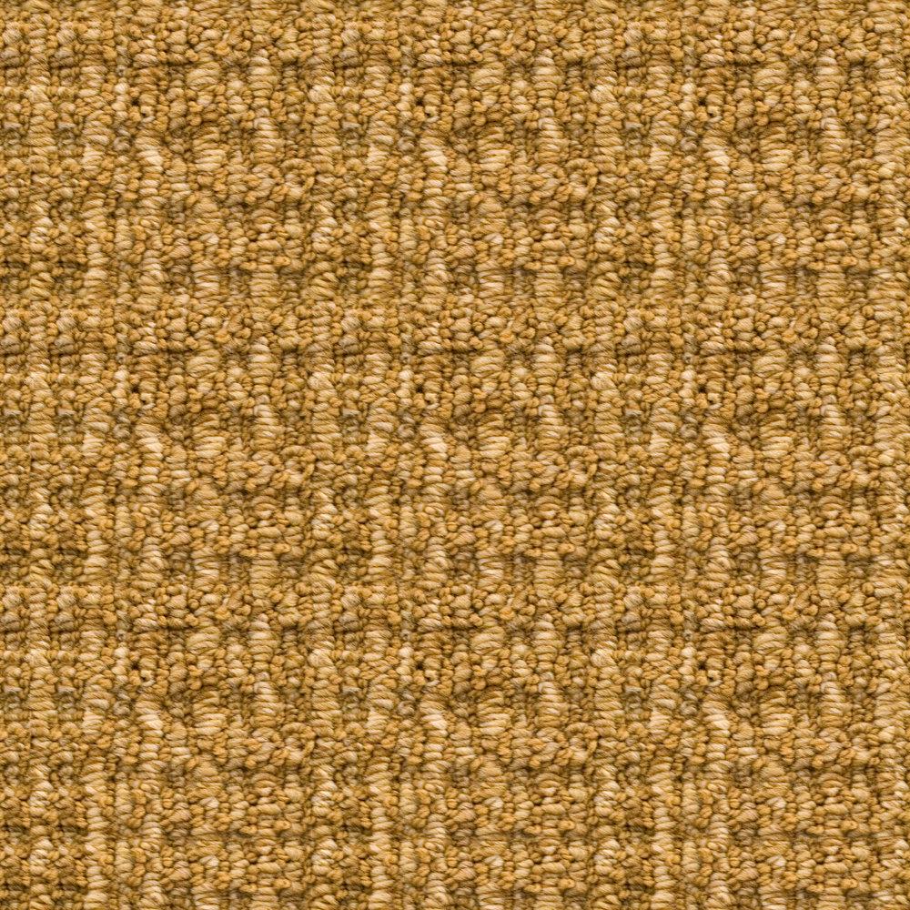 Dark Gold Carpet.jpg