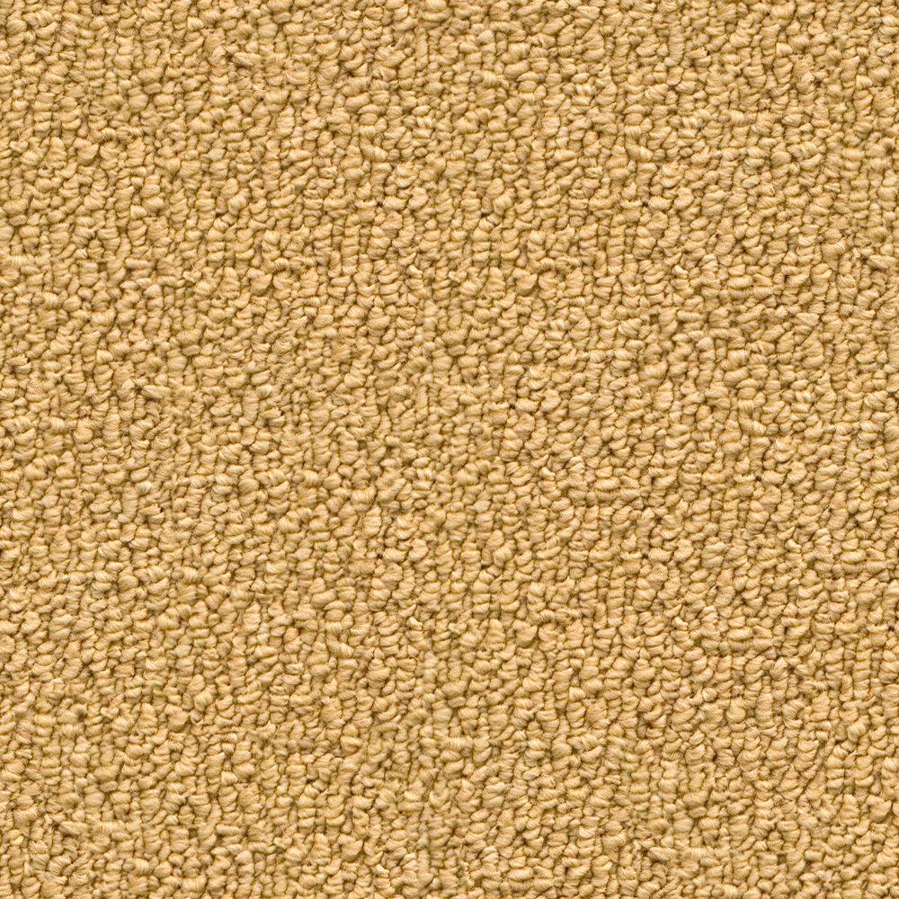 Filthy Peach Carpet.jpg