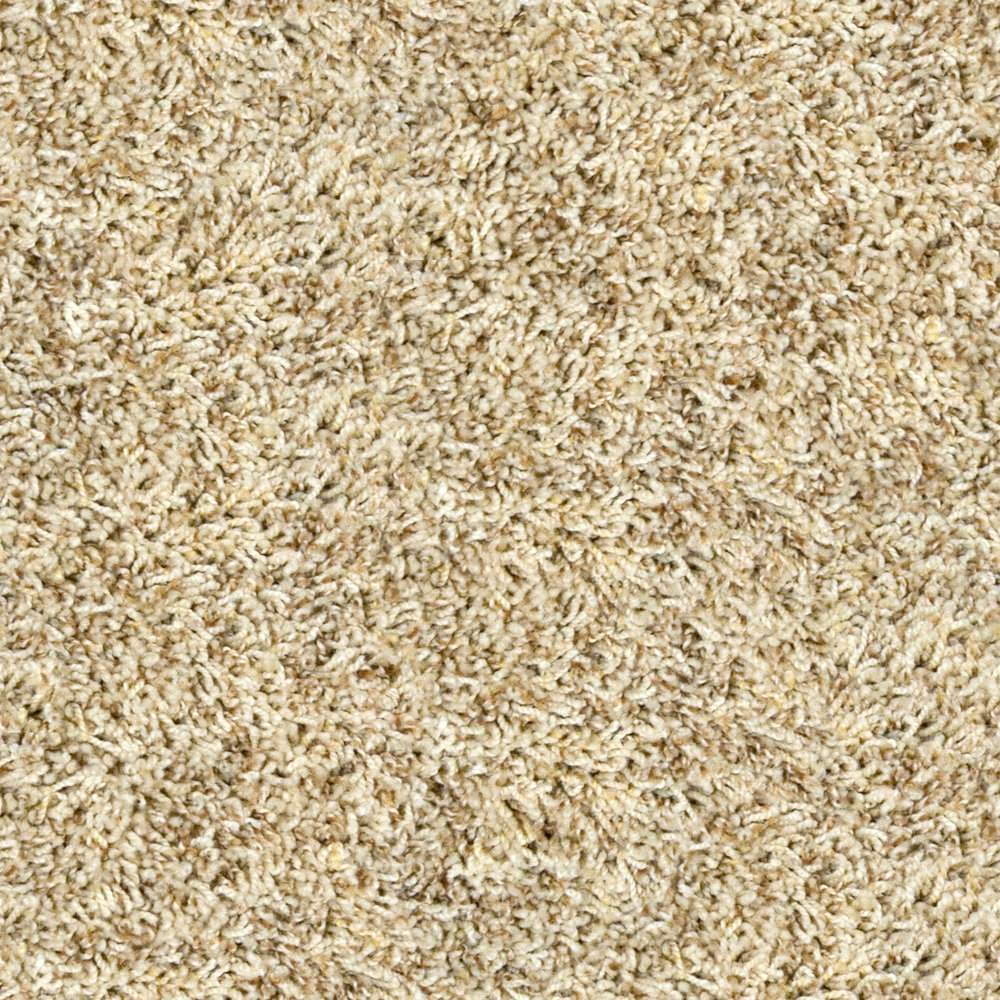 Grimy Fawn Carpet.jpg