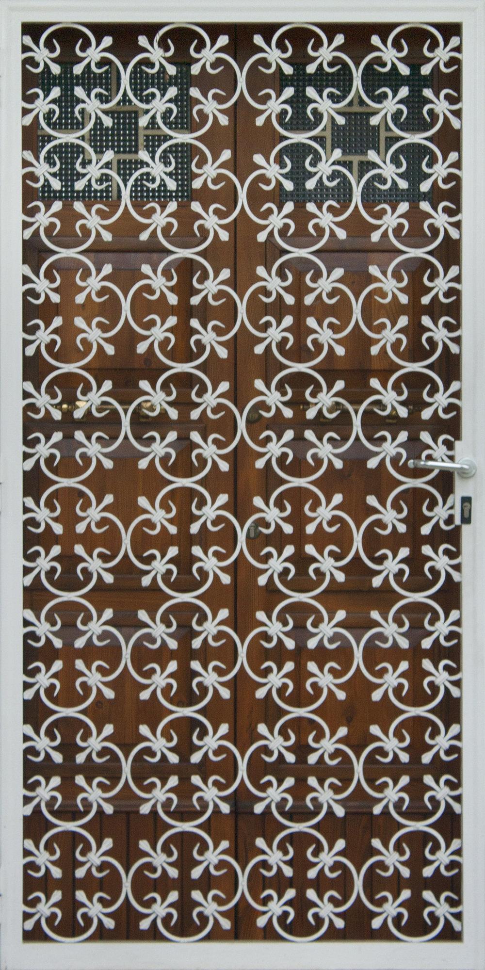 Modern Ornate Door.jpg