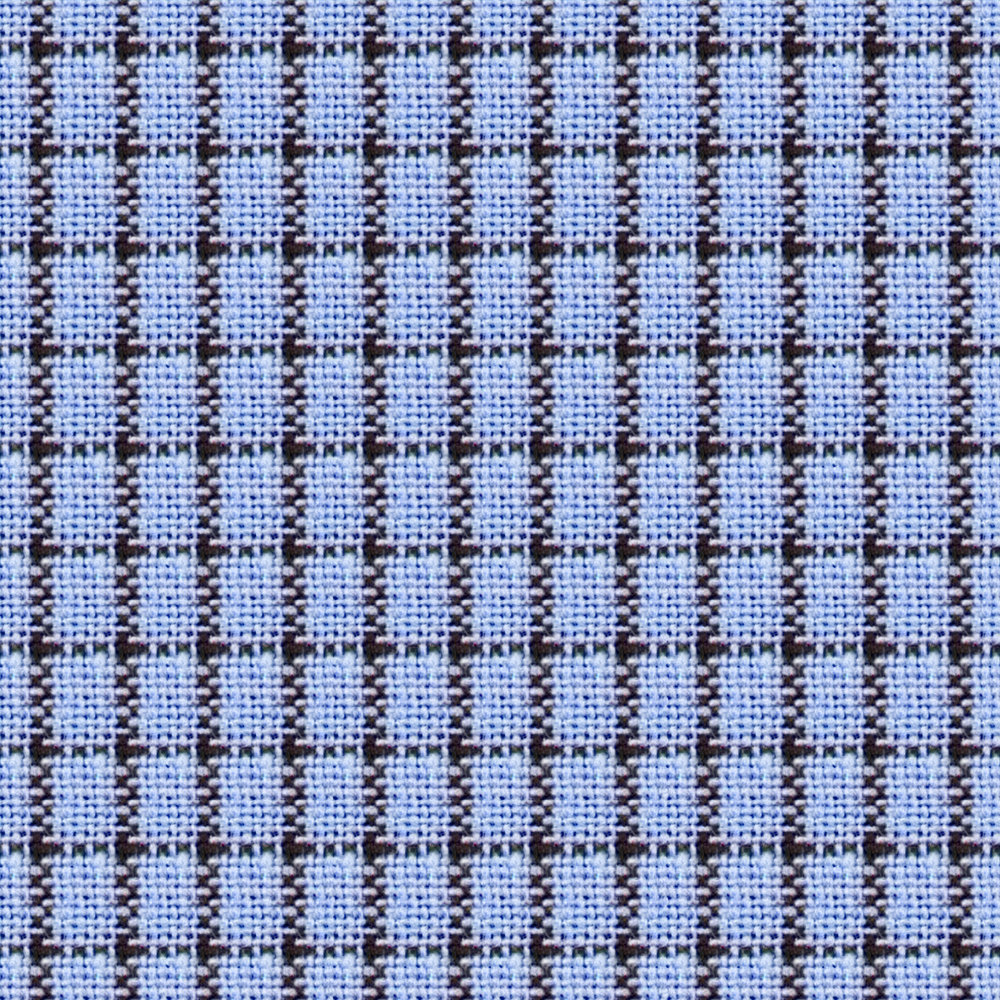 Blue Gingham Plaid.jpg