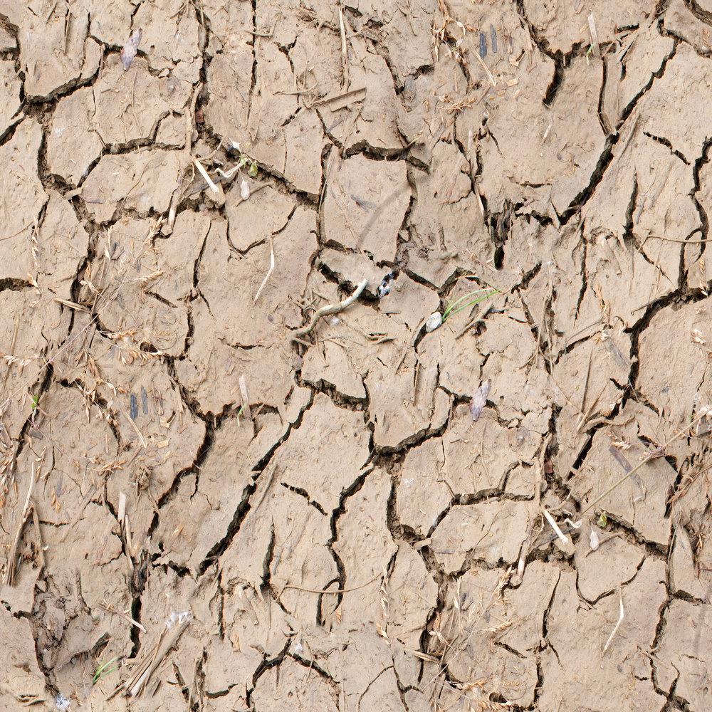 cracked-mud.jpg