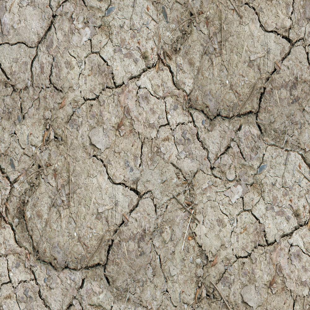 dry-mud-with-twigs.jpg