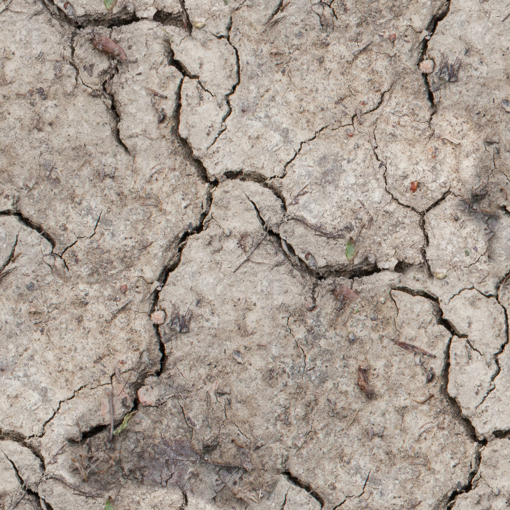 dry-mud.jpg