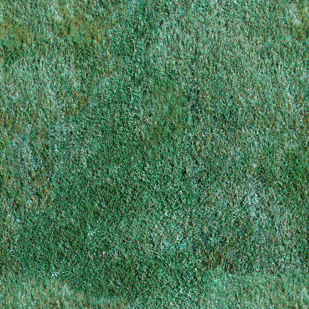 manicured-lawn.jpg