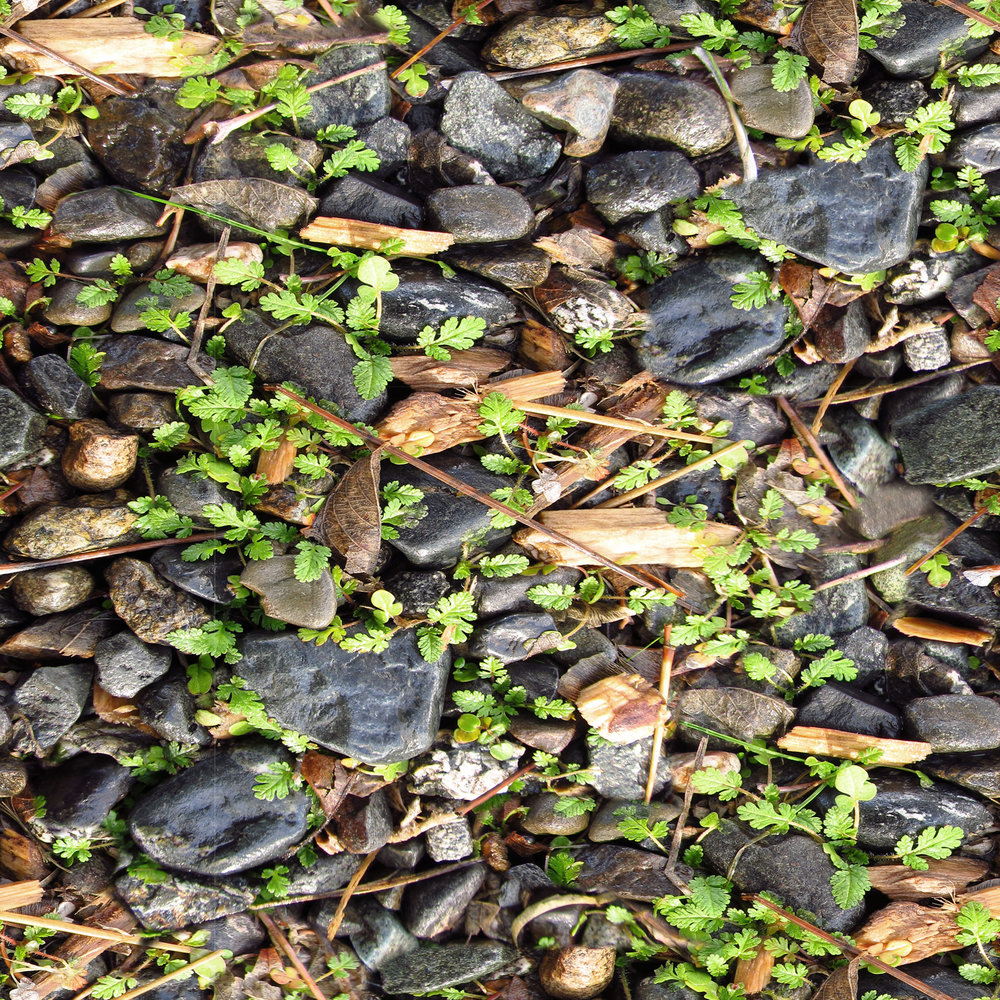mixed-rock-and-plant-matter.jpg