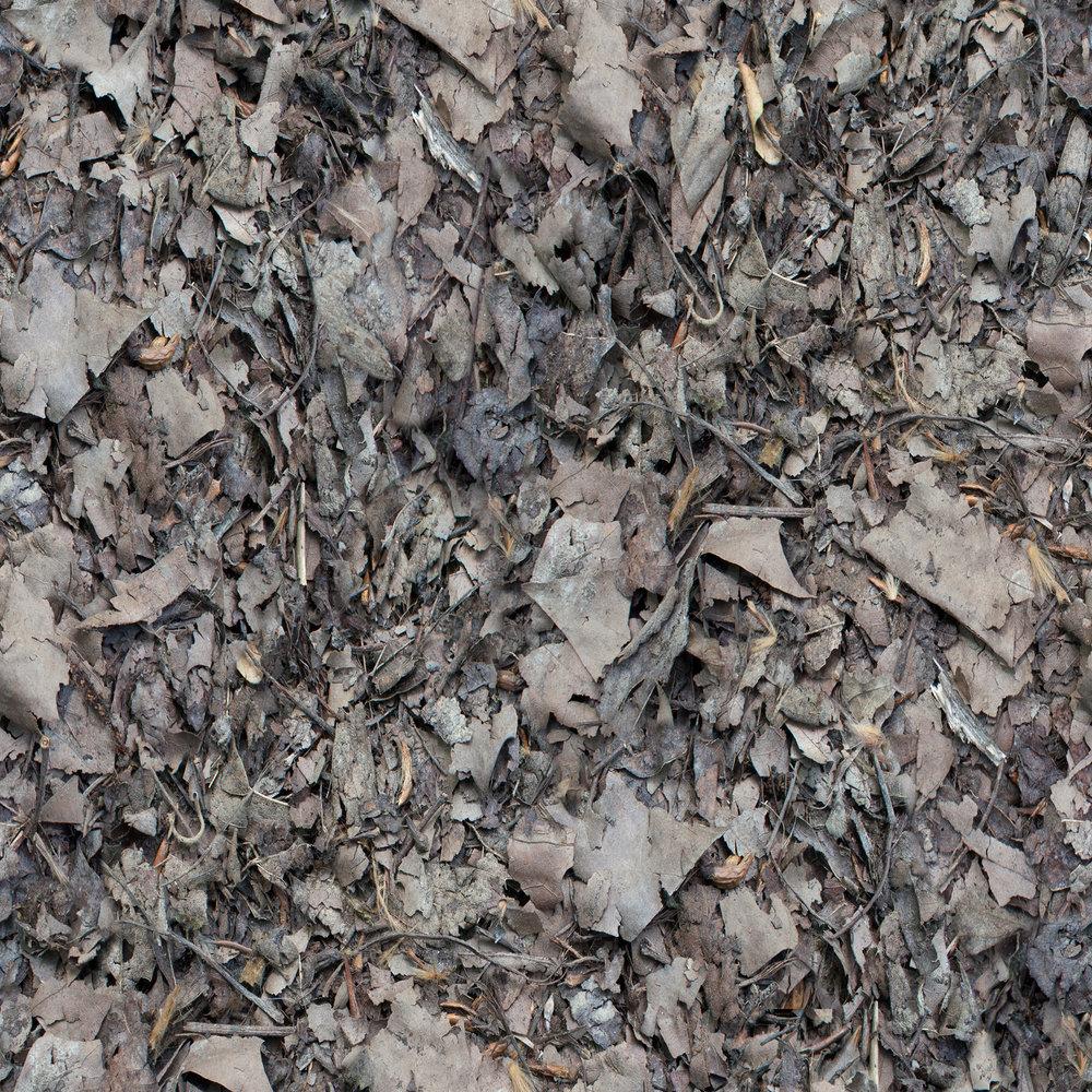 dark-brown-leaves.jpg
