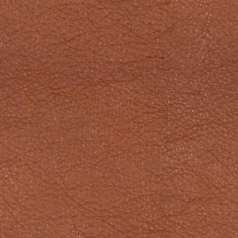 Burnt Umber Leather.jpg