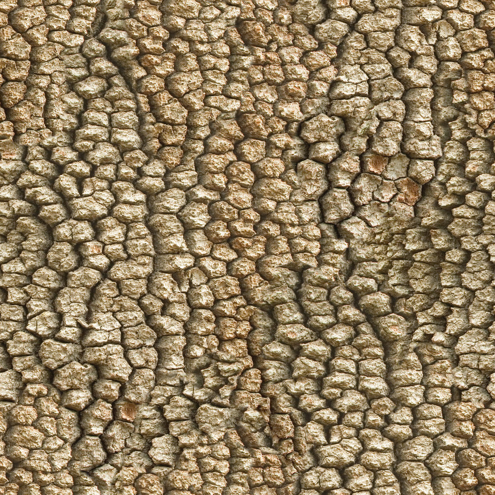 Brown Beaded Bark.jpg