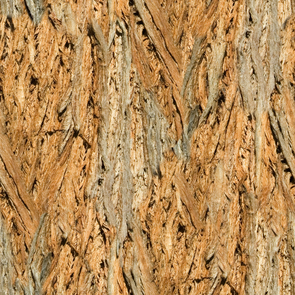 Brown Fibered Bark.jpg