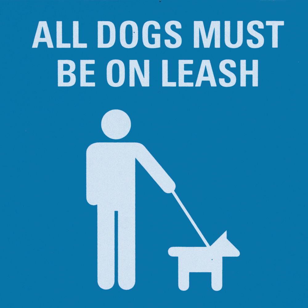 All Dogs Must Be On Leash.png