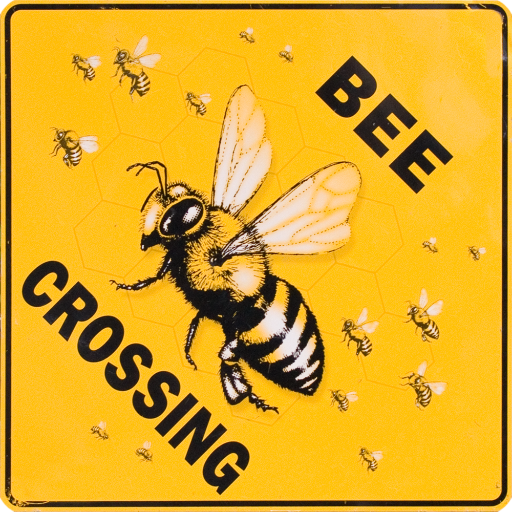 Bee Crossing.png