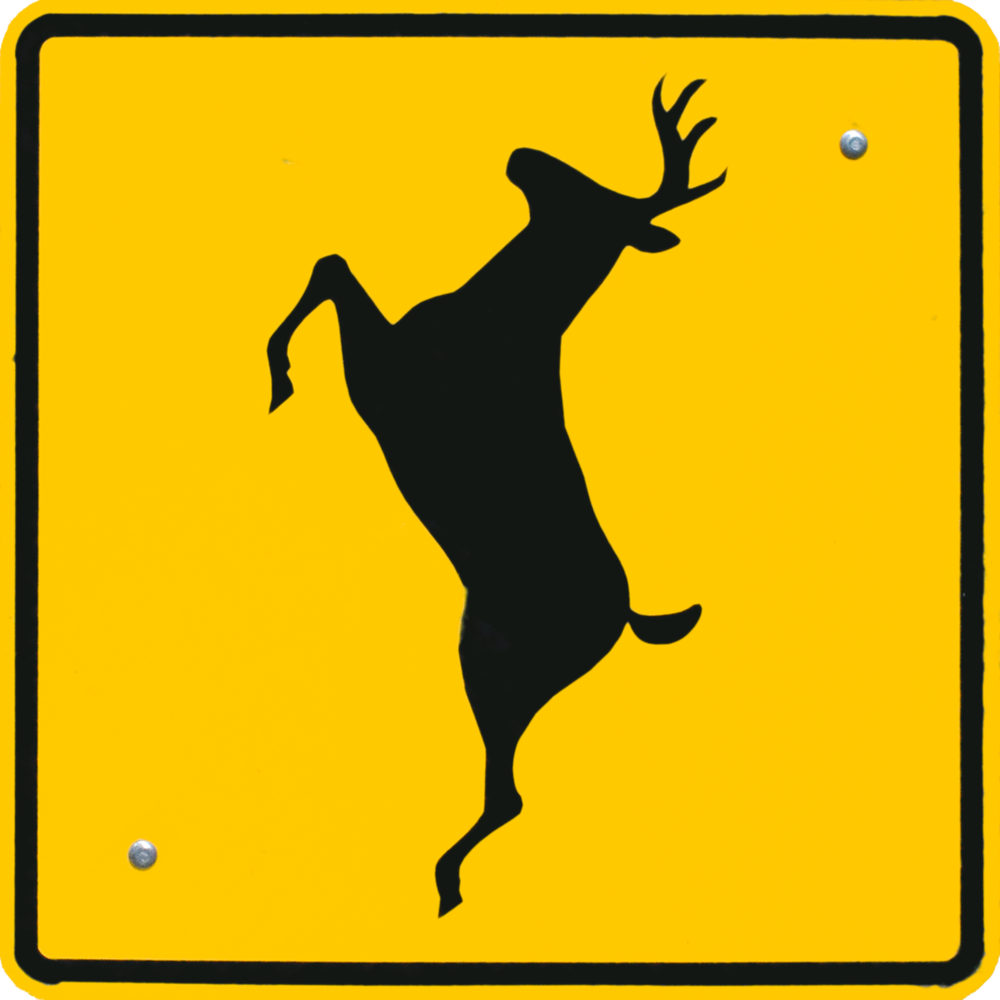 Deer Crossing.png