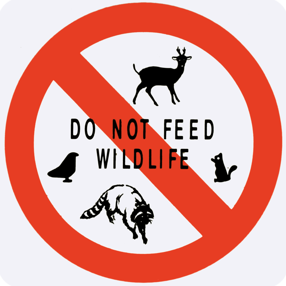 Do Not Feed Wildlife.png