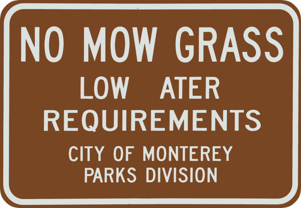 No Mow Grass.png