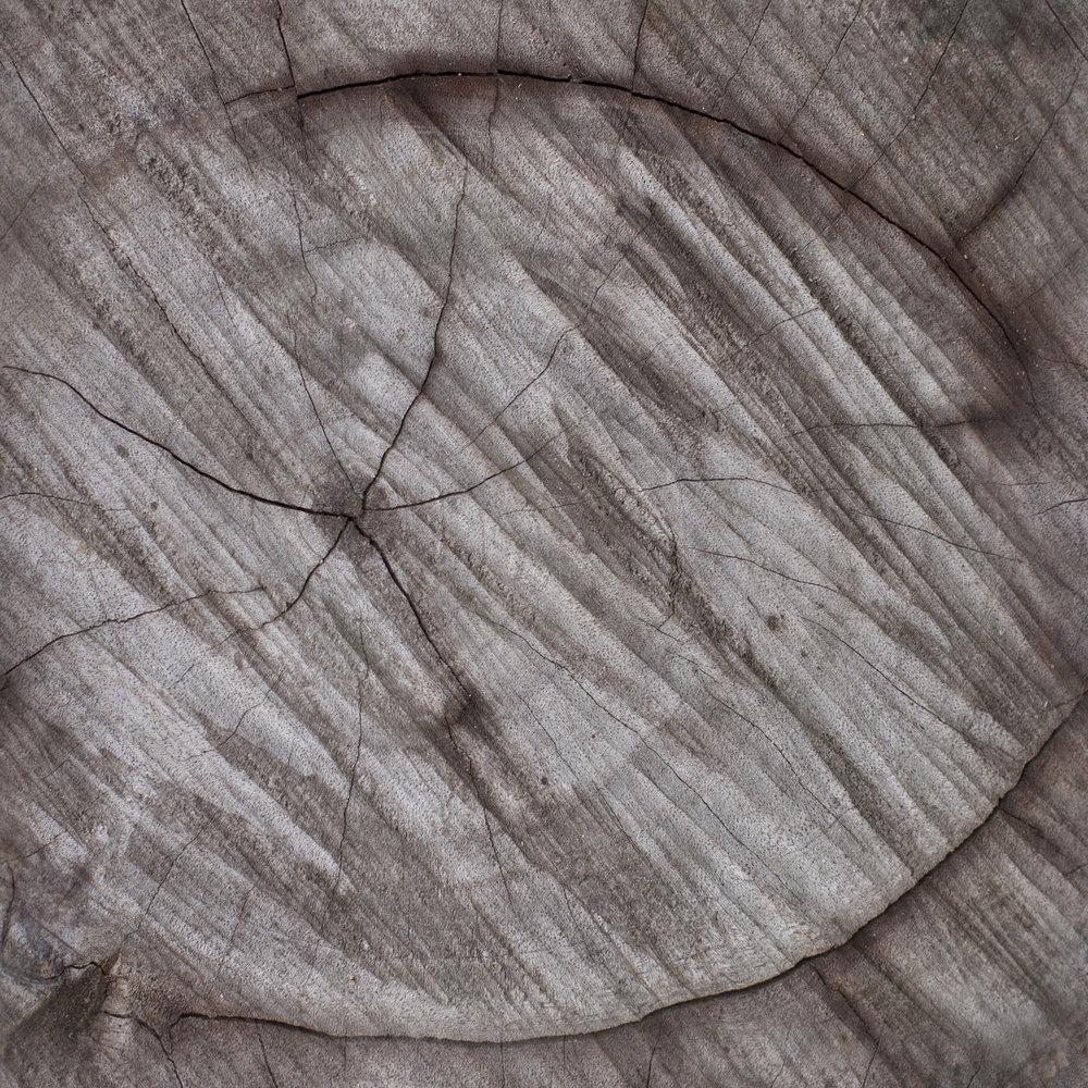 Aged Center Heart Wood.jpg