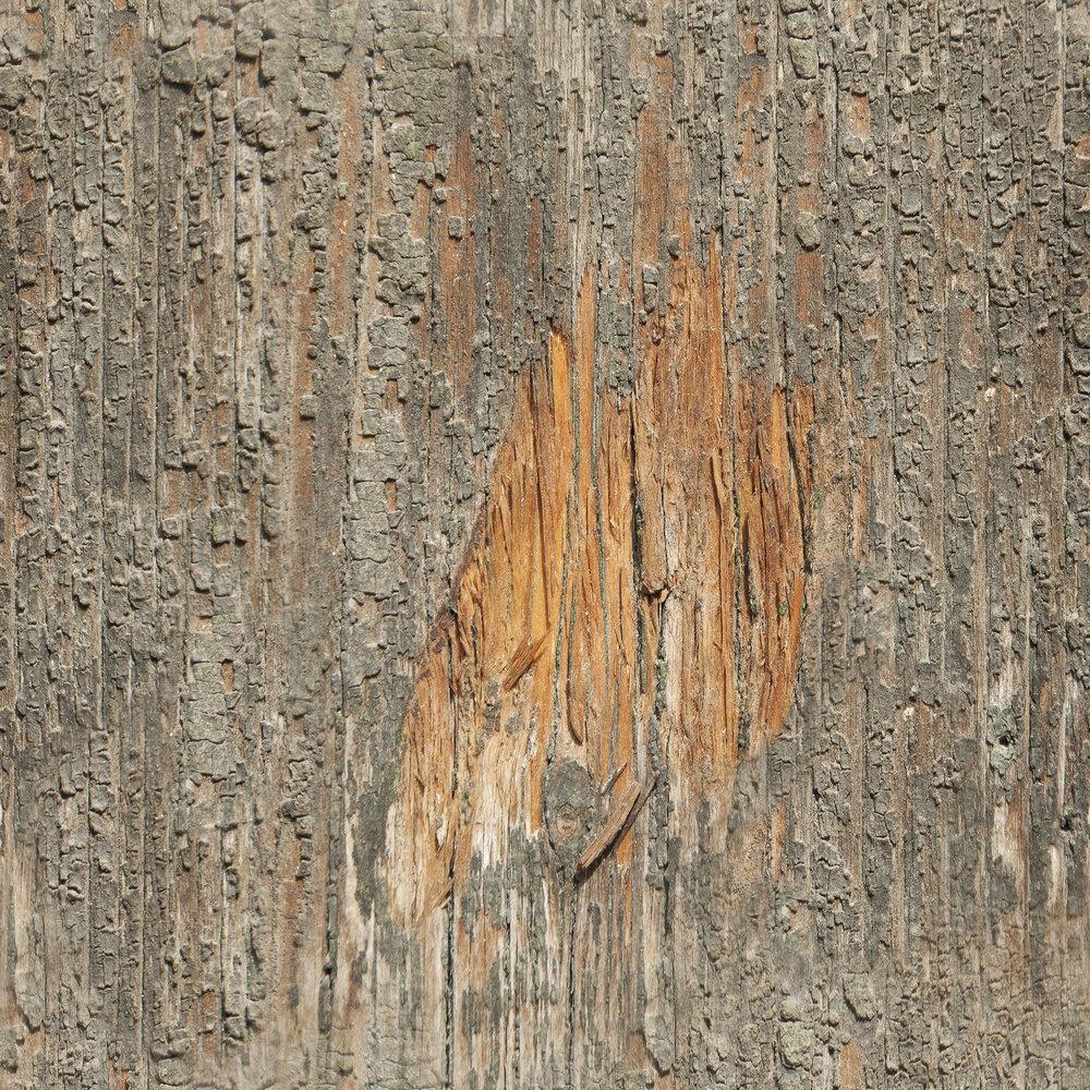 Aged Oak Wood.jpg