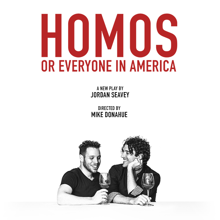 Homos or Everyone in America poster.jpg