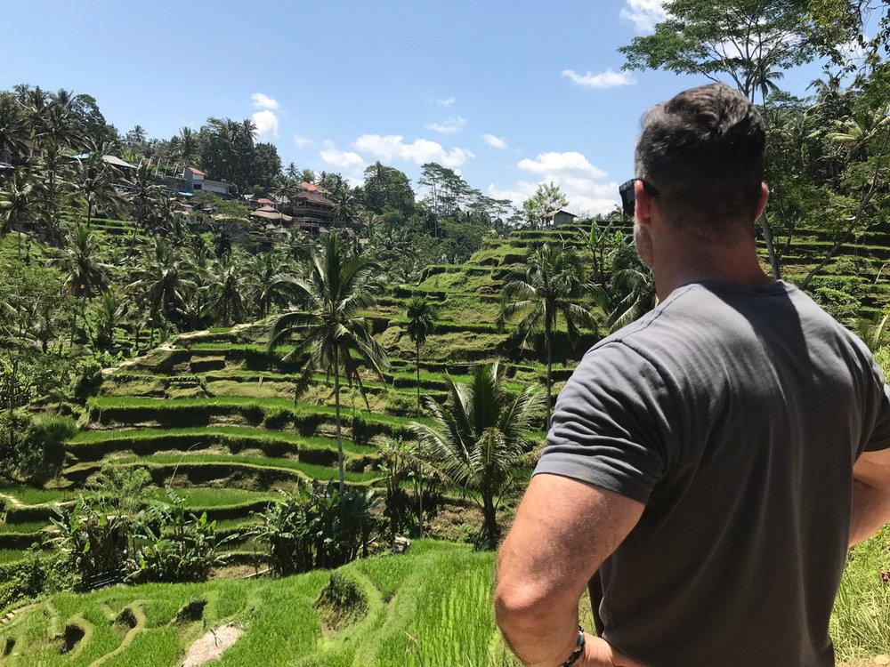 Hike Ubud's stunning rice terraces