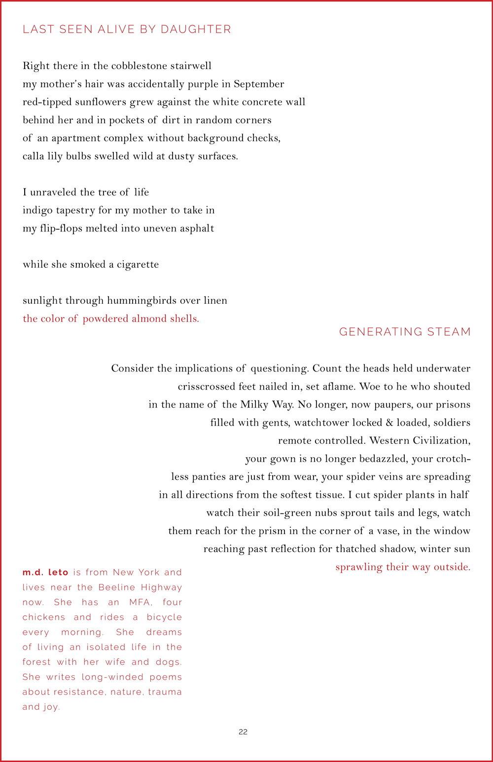 Shrew Issue 4.2-24.jpg