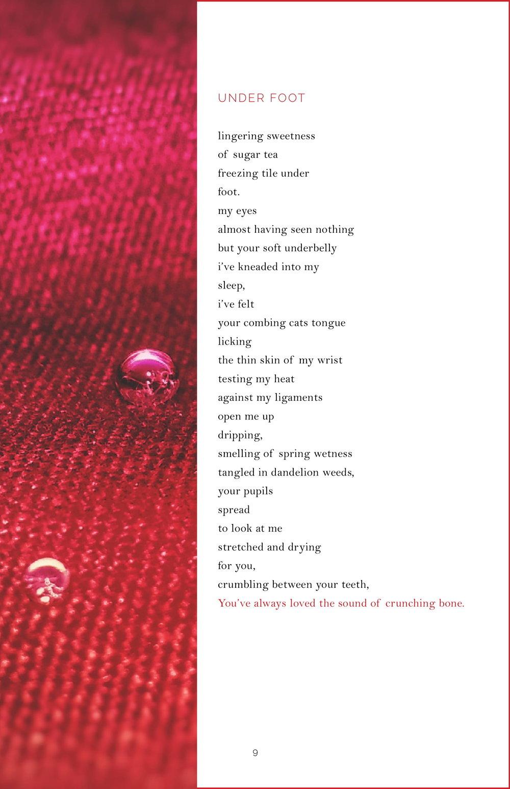 Shrew Issue 6.2-11.jpg
