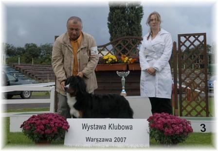 """Best in Show Junior - Swiss Mountain Dogs Show in Poland """"Tolianna Trustfull av Hiselfoss"""""""