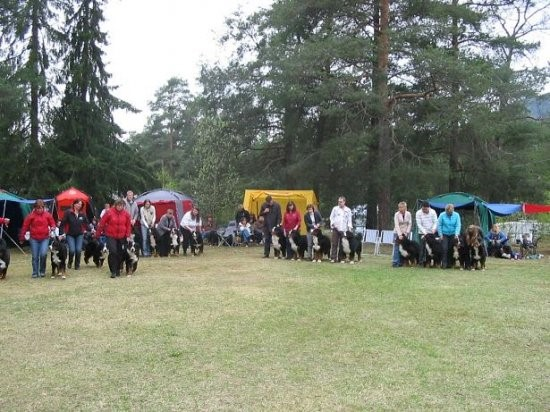 Breeding Groups competition: kennels Apoletano, Hiselfoss, Jadeland, Dale Gudbrand´s