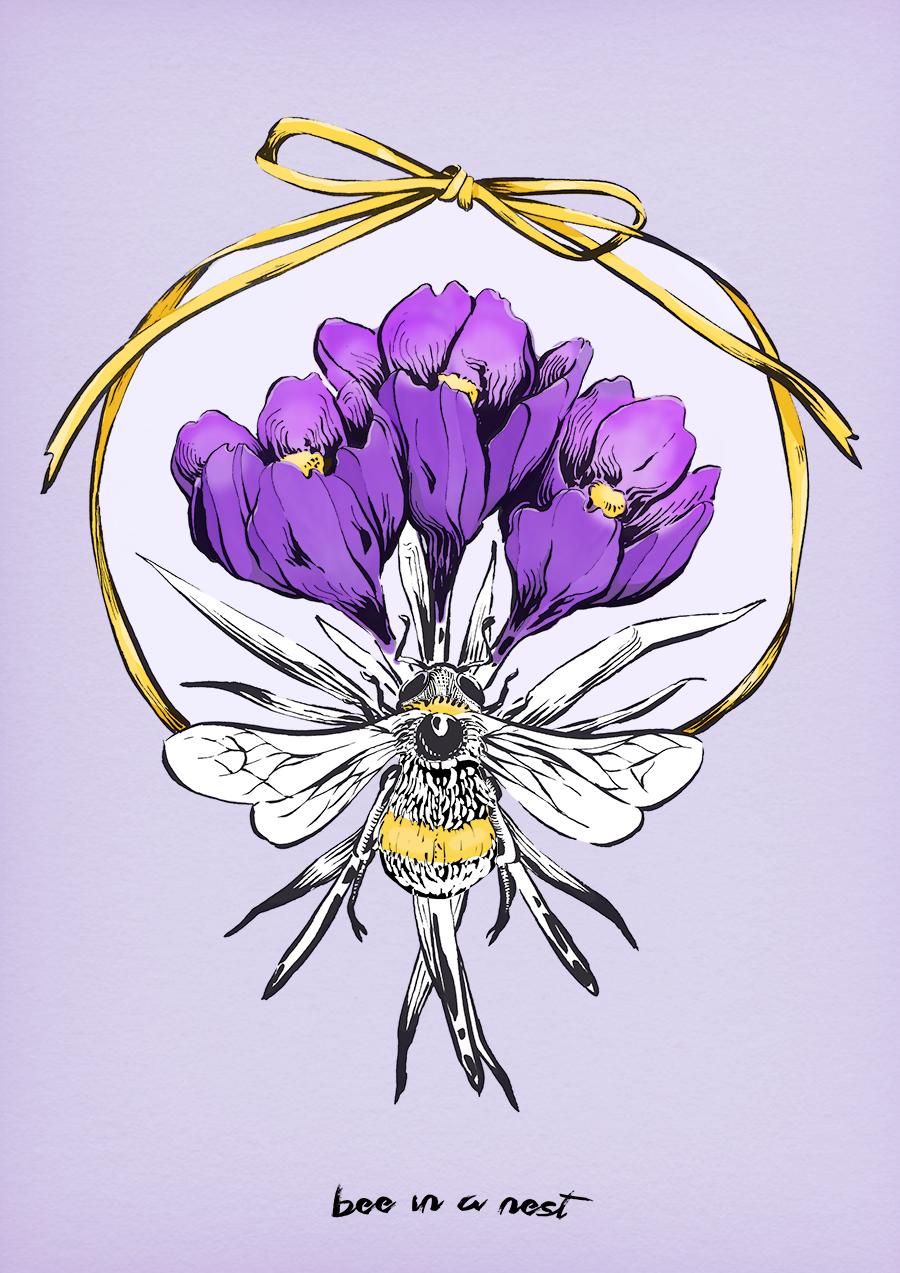Croco o Falso Zafferano  - è uno dei primi fiori a sbocciare in questa stagione della famiglia delle bulbose (bucaneve, narcisi, tulipani, iris, ecc.. ). Nel linguaggio dei fiori ha piú significati, quello che piace a me é il piú antico, cioè passione e la sensualità.