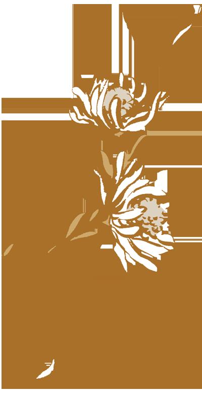 Bloom_michela-tannoia_det.jpg
