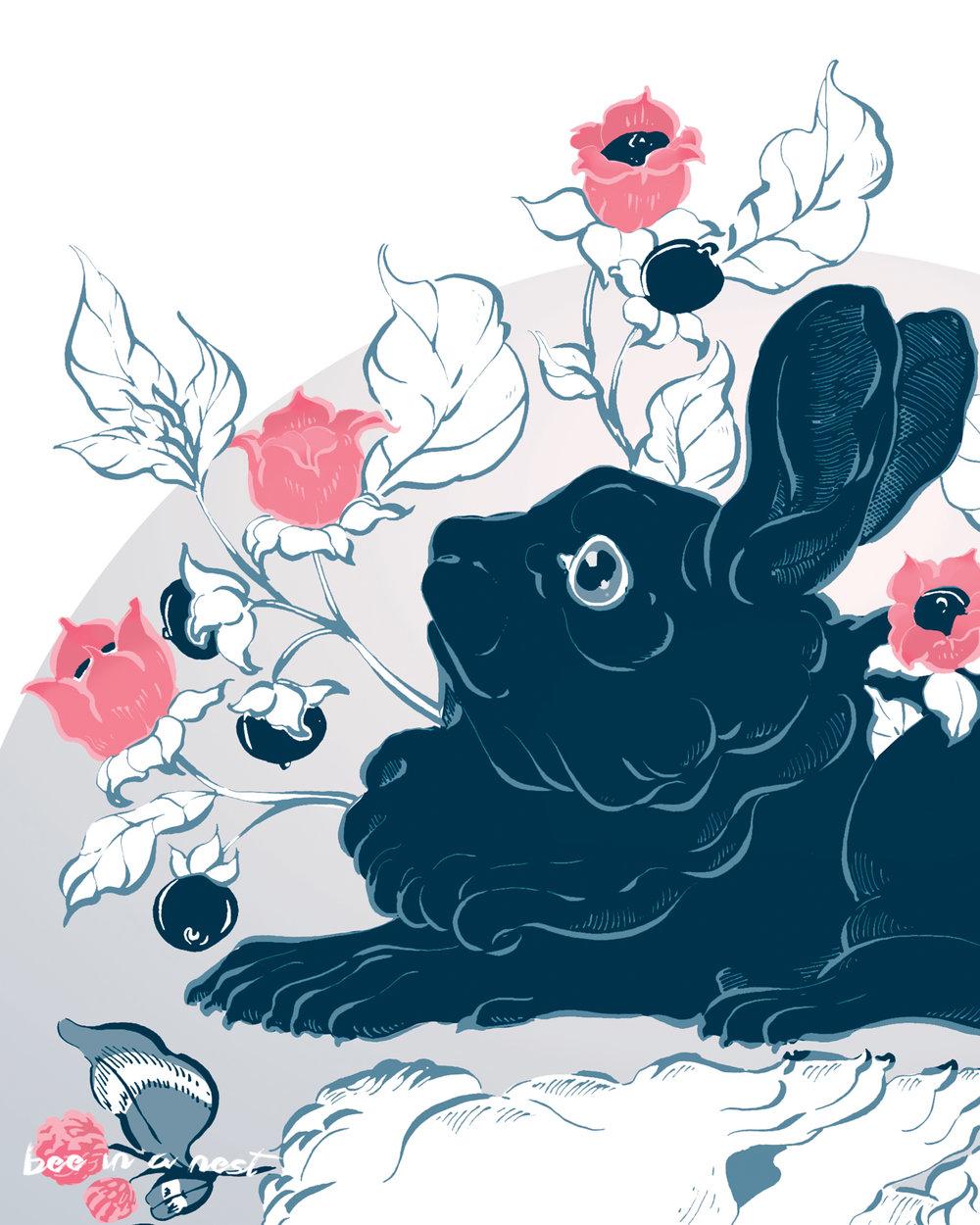Il coniglio nero - Il coniglio nero e da rappresentante dell'oscurità, della morte e dell'oblio. È incorniciato dalla pianta della Belladonna simbolo della seduzione mortale, del silenzio allusivo a quello della morte.