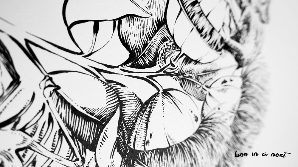 Eucalipto-michela-tannoia-3.jpg
