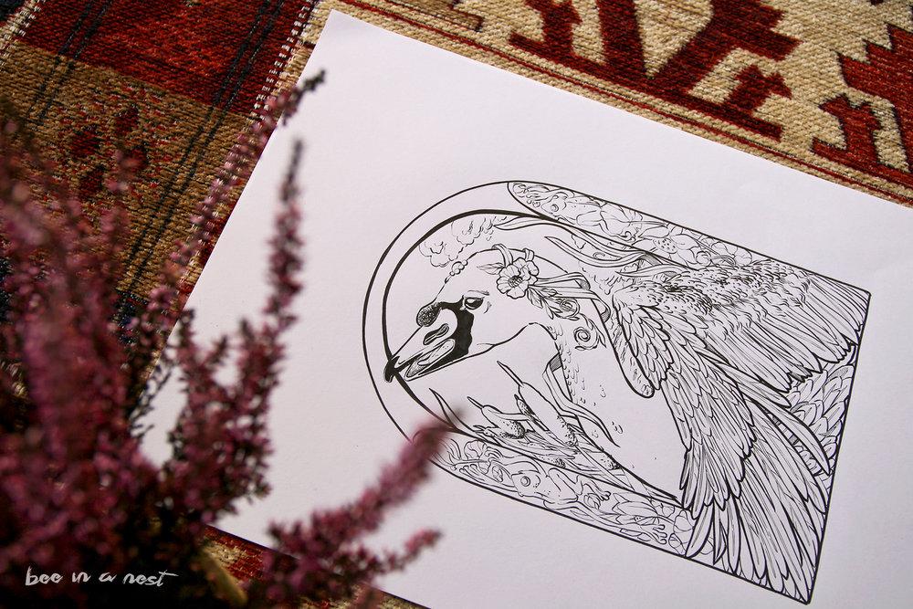 1-swan-michela-tannoia.jpg