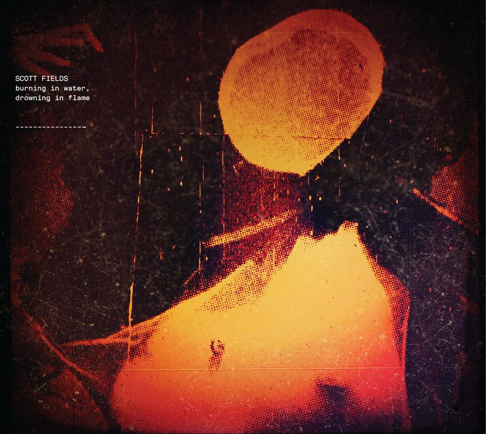 BiWDiF cover.jpg