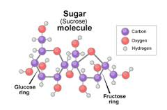 Molecular Structure Table Sugar