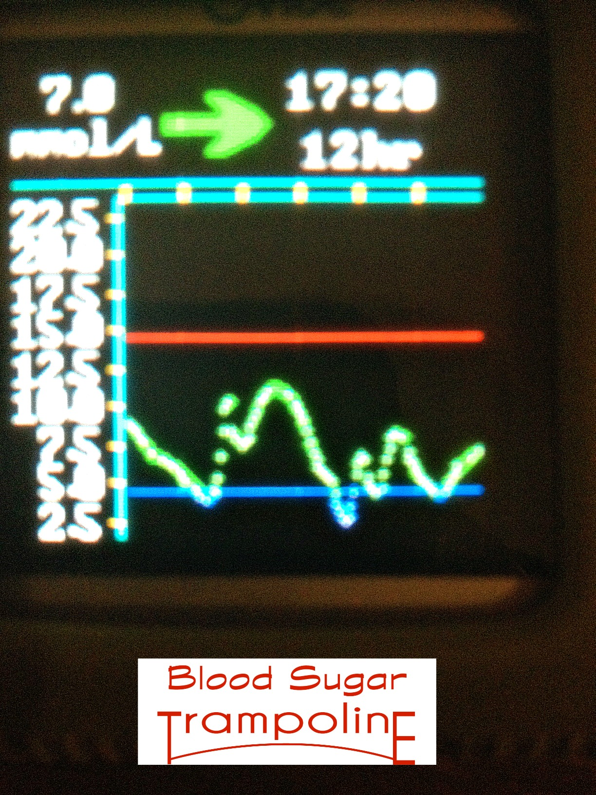 Bouncing on the Blood Sugar Trampoline