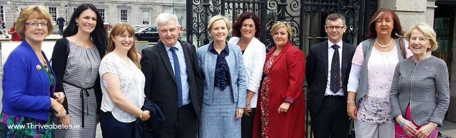 Diabetes briefing in Leinster House
