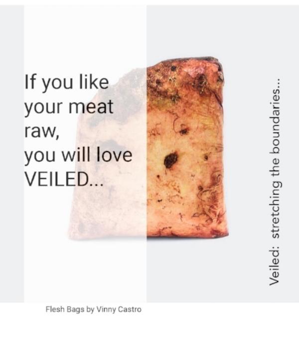 vinny castro flesh bags.jpg