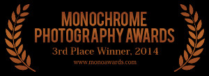 monoawards_2014_3rd_place.png