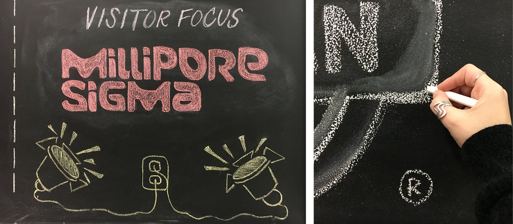 Chalk Collage 3.jpg