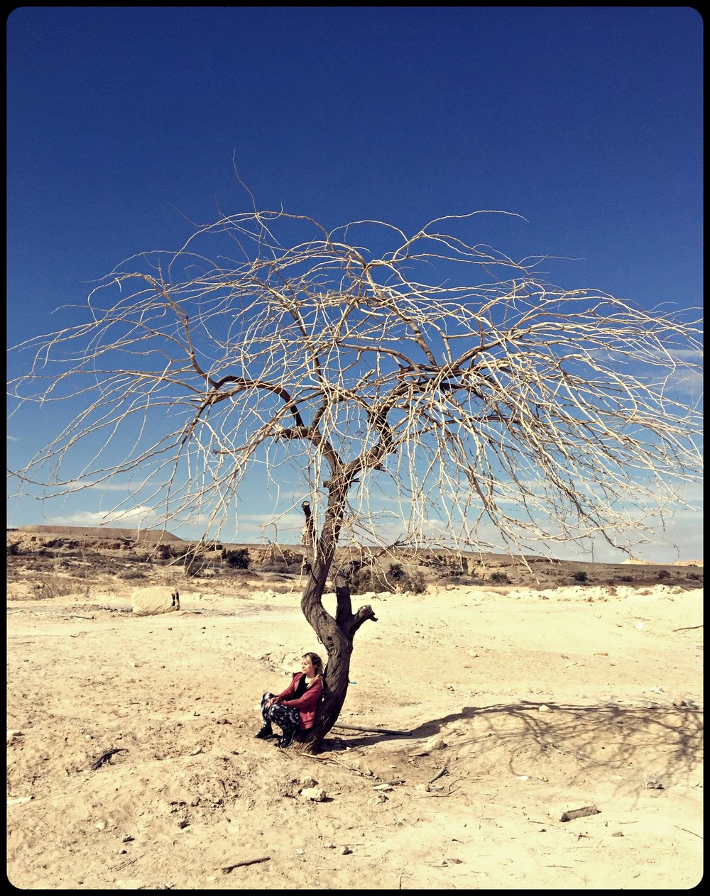 Odpoczynek na Pustyni Negew