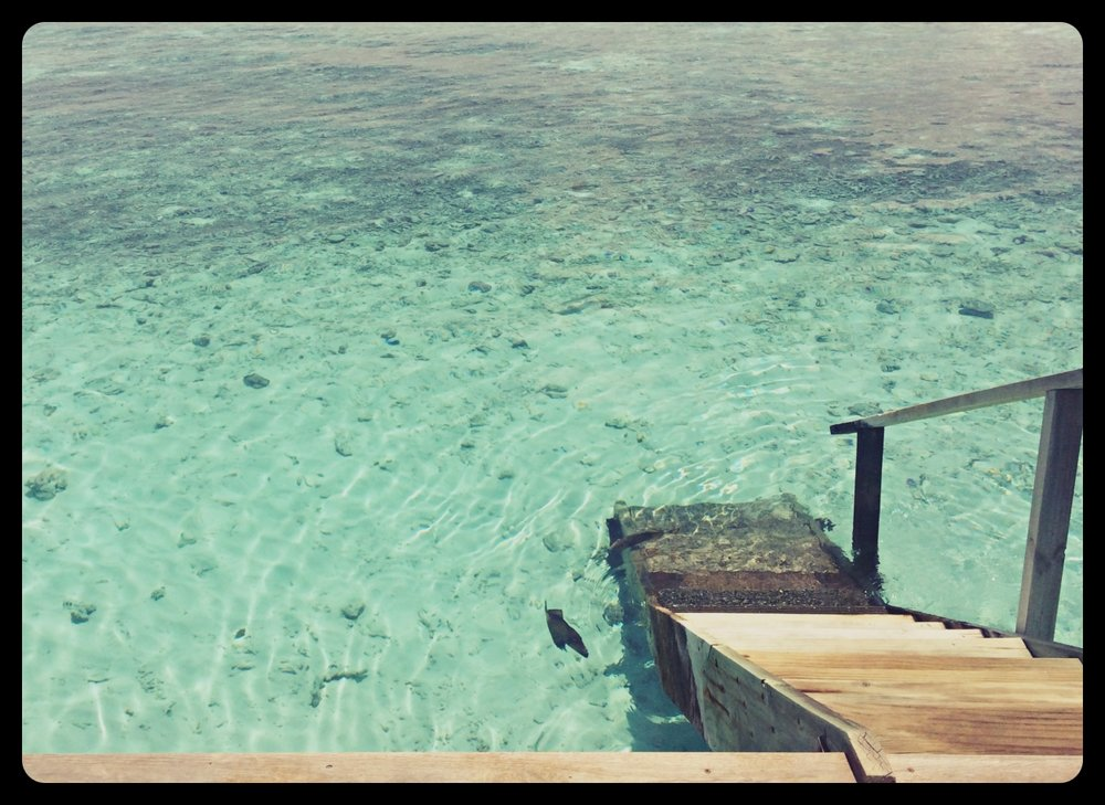 Zejście z tarasu do oceanu