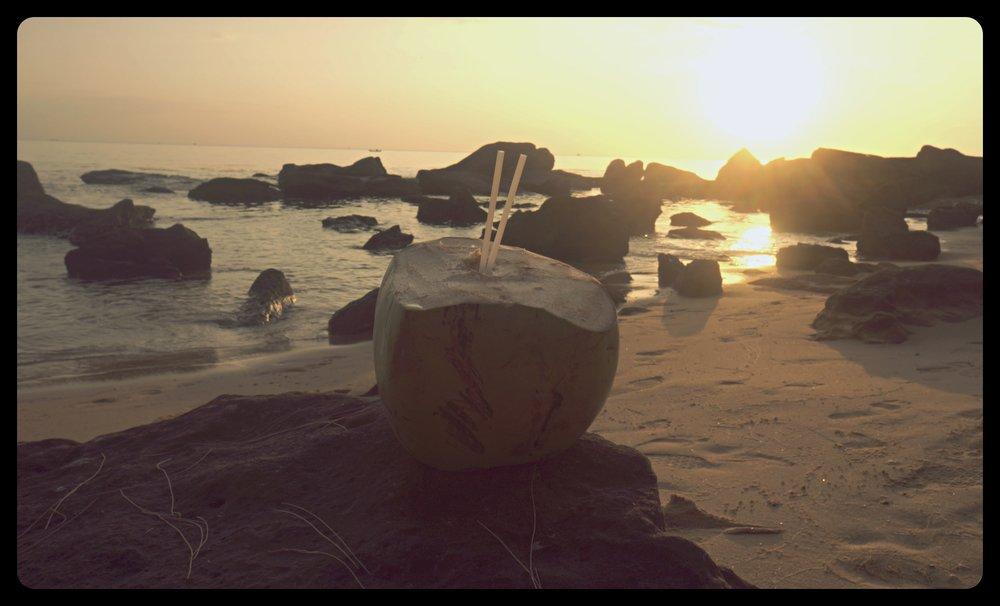 Świeży kokos o zachodzie słońca