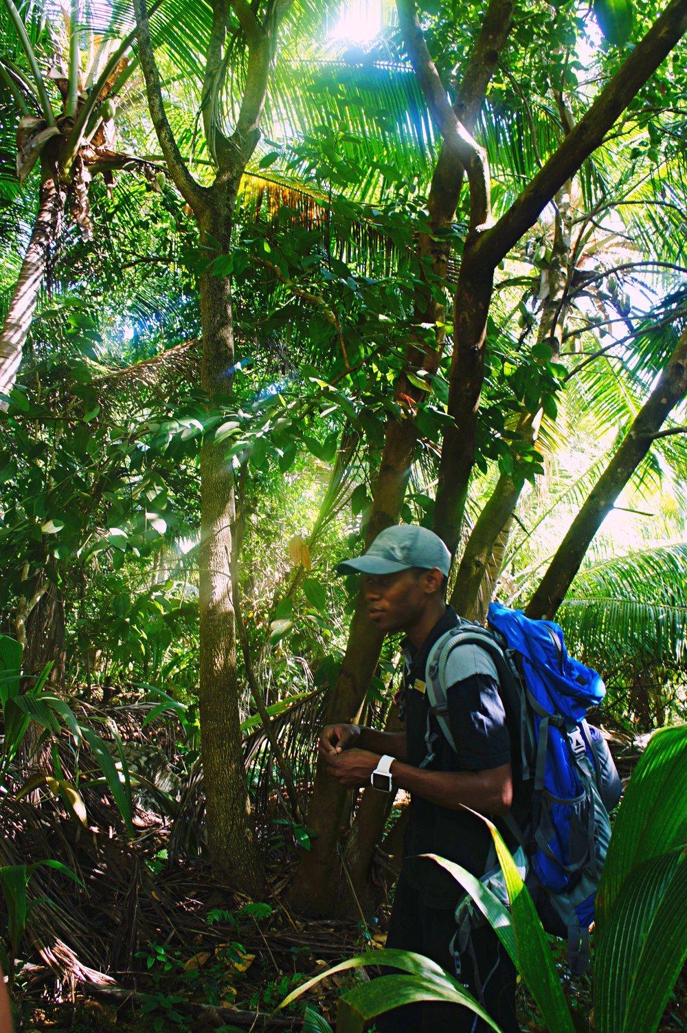 hiking_altertonative.JPG